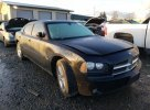 Lot #1640091915 2007 DODGE CHARGER R/
