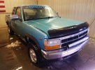 Lot #1680767758 1995 DODGE DAKOTA