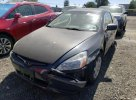 Lot #1693560609 2004 HONDA ACCORD EX