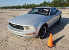 Lot #1770396623 2007 FORD MUSTANG