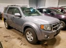 Lot #1414990701 2008 FORD ESCAPE HEV salvage car